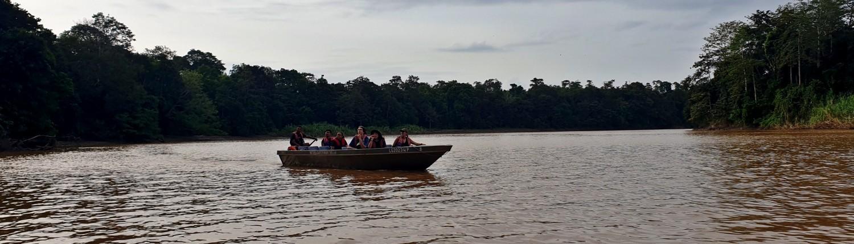 Excursión desde el Rio Kinabatangan Borneo